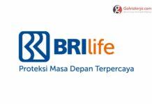 Lowongan Kerja PT Asuransi BRI Life