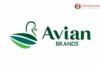 Lowongan Kerja PT Tirtakencana Tatawarna (Avian Brands)